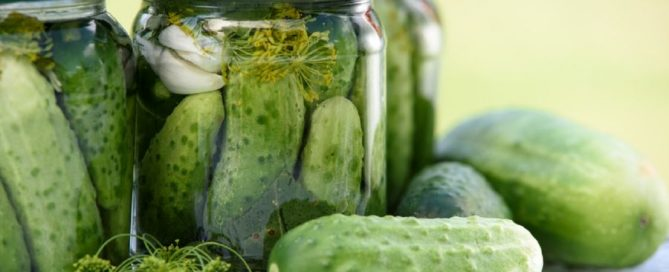 Pickled cucumbers, known as Dill Pickles, are the #1 pickles in America