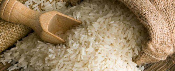 Rice is one of the most popular grains in the United States