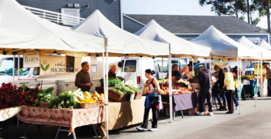 farmers market tents