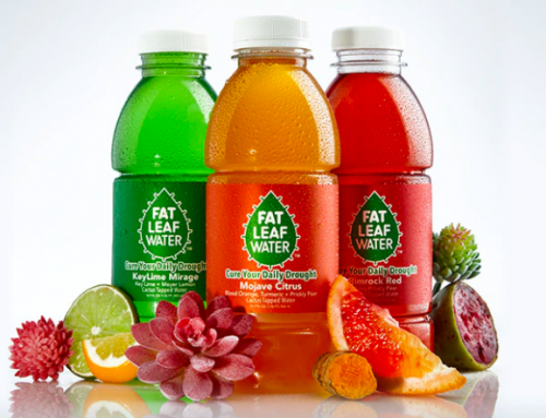 How Fat Leaf Water Raised $30k+ for a Cactus Water Sports Beverage