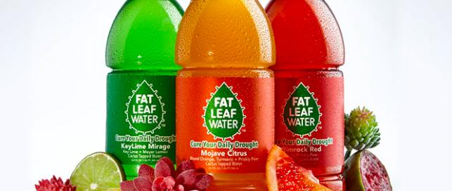 fat leaf water