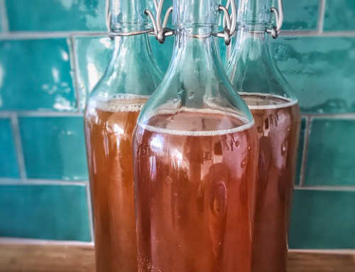 67 Creative Kombucha Company Name Ideas You Can Use